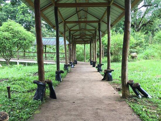 Reserva Pájaro Brujo