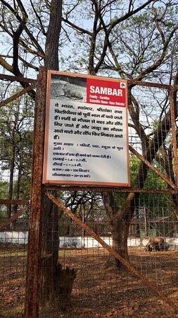 Jawaharlal Nehru Biological Park