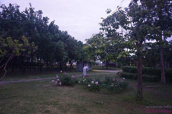 꽃이 있는 정원