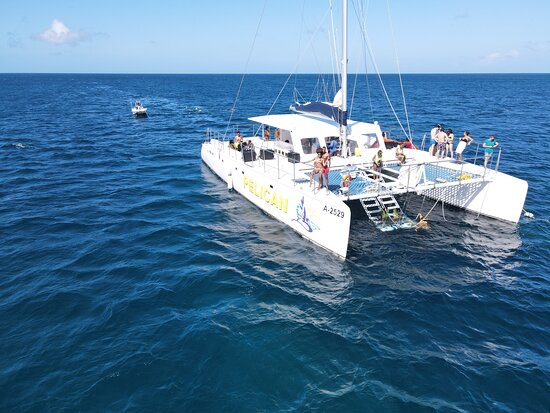 Aruba Champagne Breakfast and Lunch Cruise with Snorkeling: If you have a drone you can get some really great shots!! Just be careful of the wind!! Youtube: Nashae Shainte