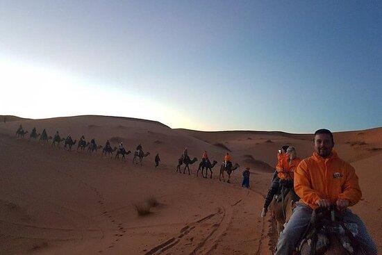 Trip To Merzouga Desert From Erfoud, Sunset Over Dunes, Camel Ride...