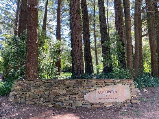 Cooinda Gardens