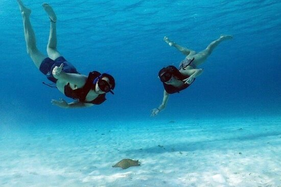 Catamaran and Snorkeling Tours