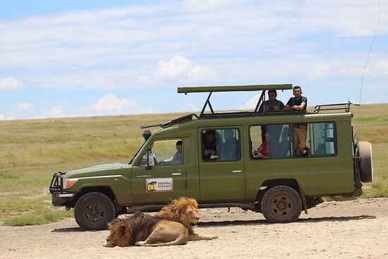 4-Day Private Tour Visiting Serengeti and Ngorongoro Wildlife and...