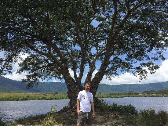 Africa Merit Safari & Adventures