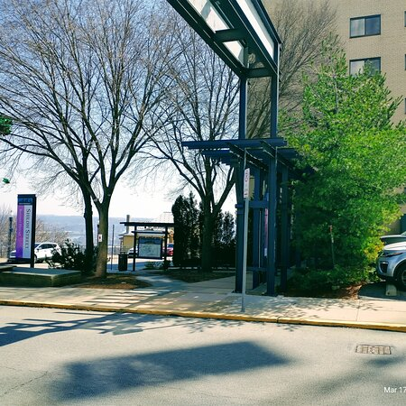 Shiloh street entry Park