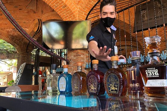 Full-Day Tequila Private Tour from Guadalajara