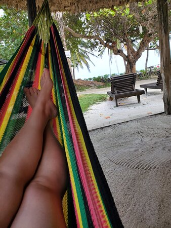 View from hammock under main palapa in courtyard