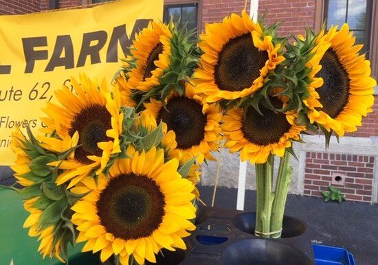 Brighten up your day with a sunflower bouquet!