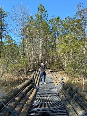 A great bridge to walk across at Crosby Arboretum