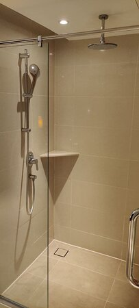 Suite Room: rain shower and hand shower. Larger shower space than regulra room