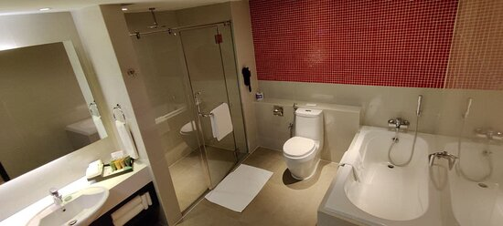 Suite Room: larger main bathroom with tub and rainshower. Two toilets in total