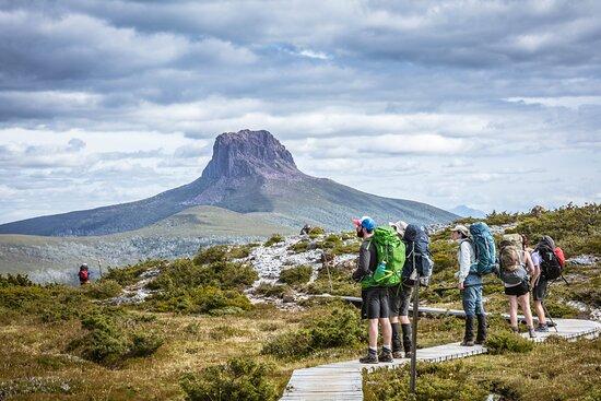 Trek Tasmania