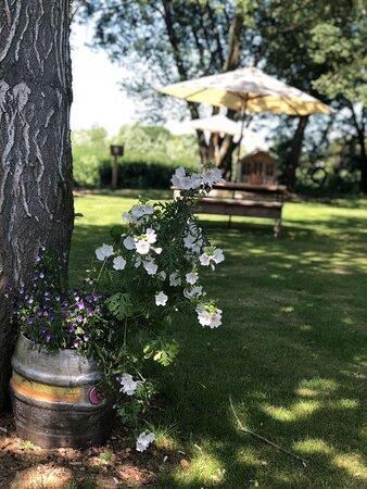 Garden at the Bourne Valley Inn