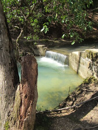 Natural Bridge, AL: River next to parking lot with small waterfall....picnic tables & a nice place to eat.
