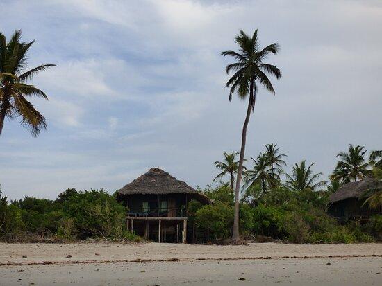 Saadani National Park, Tanzanija: Simply Saadani