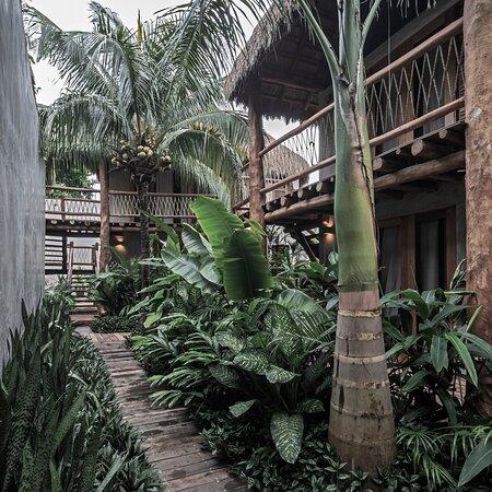 Casa Hormiga Bacalar