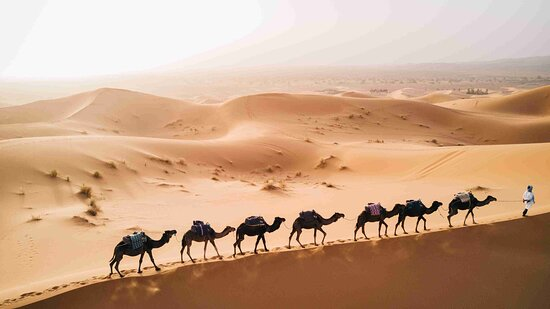 Atlas and Marrakech Day Tours