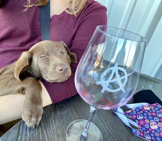 Anarchy Wine Co