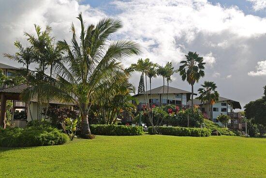 Wide Shot Resort