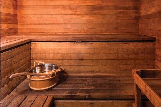 Sauna - The Donatello