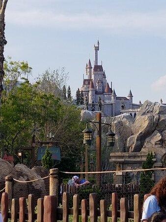 Walt Disney World صورة فوتوغرافية