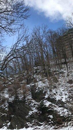 Walderlebnispfad - park - les