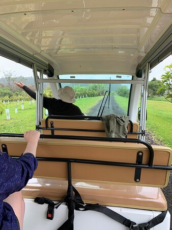 Rode on a big golf cart bus