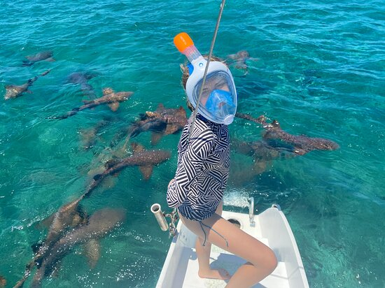 Day Sailing to Caye Caulker and KoKo King: Brave girl about to swim with sharks!