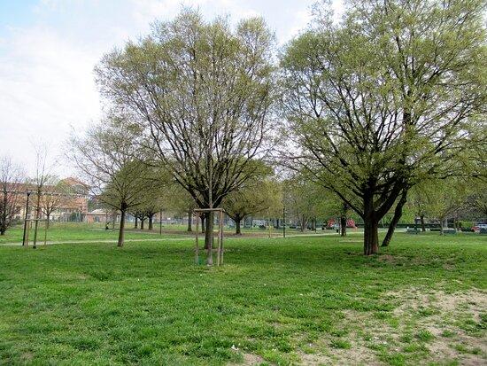 Parco Giovannino Guareschi