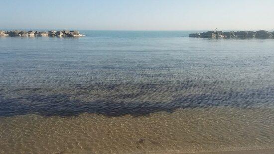 Misano Adriatico, Italy: mare calmo e pulitissimo Lui è pronto...... voi???