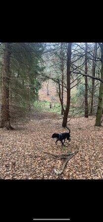 County Durham Fotografie