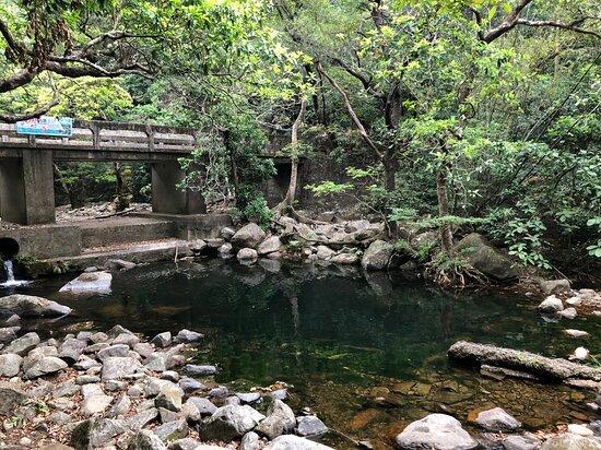 Shing Mun Country Park - stream