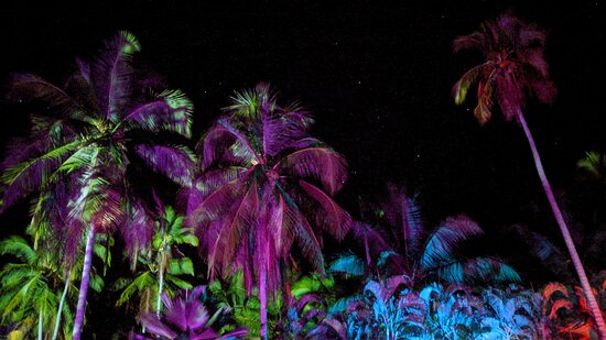 Palo Seco, Costa Rica: In front of the hotel at night