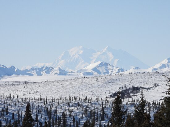 10 Hours Denali Winter Drive in Alaska: A view of Denali in the distance