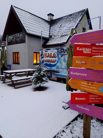 Kallaste, Estland: Peipsi kalapunkt