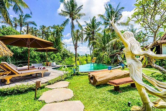 Ubud, Indonesia: swarma villa  pool   mengadap ke pemandangan  sawah dan gunung yang indah di pagi hari