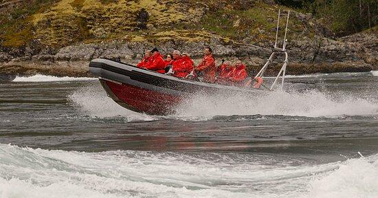 Skookumchuck Boat Tours