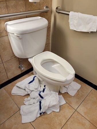 Toilet flood at 1am