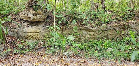 Sian Ka'an & Birdwatching Tours By Eddy: Mayan ruin site in the jungle