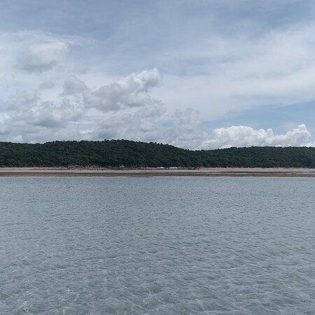 Vem conhecer esse paradisíaco chamado Praia de Carro Quebrado. Tem falésias, Piscinas Naturais e Ecológico Gamela.  Contato (82) 993207383