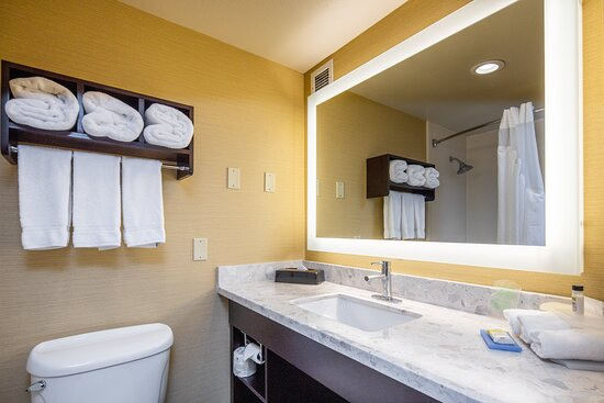Executive King Vanity Holiday Inn Express Castro Valley East Bay