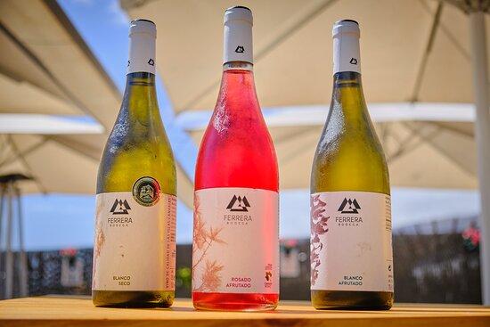 Selección de vinos del Valle de Güímar