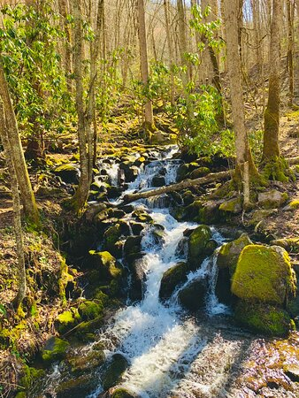 Cherokee, Carolina do Norte: Small but beautiful falls❤️