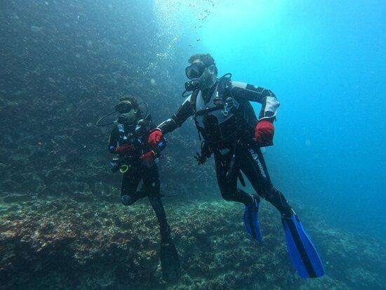 Espanola, Ecuador: Diving at Española