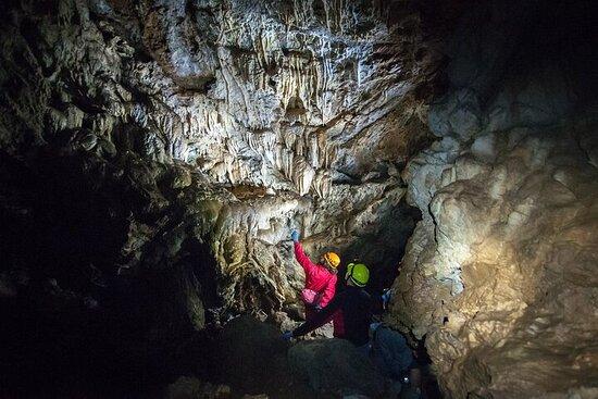 Riverbend Cave Explorer