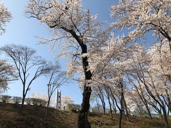 Hyunsan Park