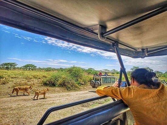 Murchison Falls National Park, Uganda: #VisitUganda, Indulge in a tailor-made and authentic African Wildlife Safari or holiday travel with  @SnoweaSafaris , a voyage of pure discovery that will leave every wildlife enthusiast and holiday traveler thrilled for the holistic experience. Gorilla, Leopard, Rhinoceros, Elephant, Man rowing boat & more