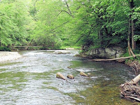 Cherokee, Carolina do Norte: view from trail