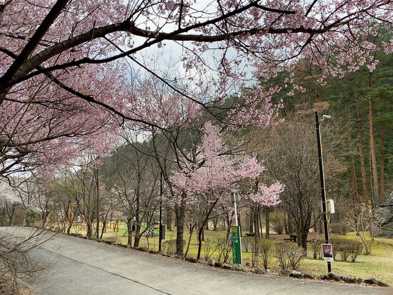 Mitsutoge Sakura Park